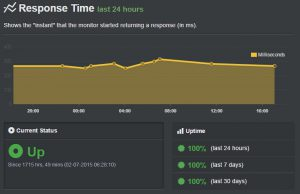 iPage Hosting Uptime Record - Coty