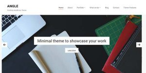 Angle - Premium WordPress Theme