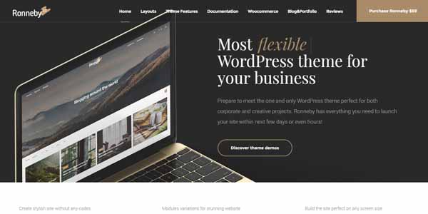 Ronneby - Premium WordPress Theme