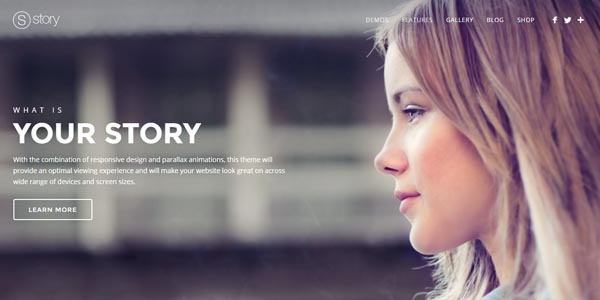 Story - Premium WordPress Theme