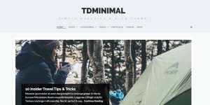 tdMinimal - Premium WordPress Theme