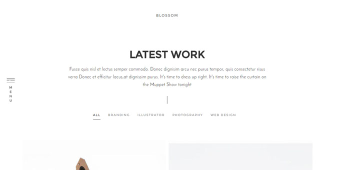 Blossom - Premium Minimal WordPress Themes