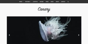 Canary - Premium Minimal WordPress Themes