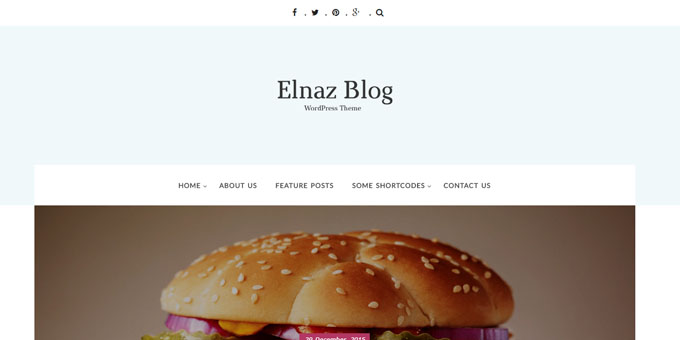 Elnaz Blog -  WordPress Blog Design
