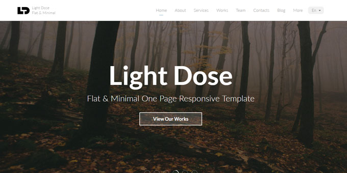 Light Dose - Premium Minimal WordPress Themes