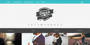 Ostrich - Premium Minimal WordPress Themes
