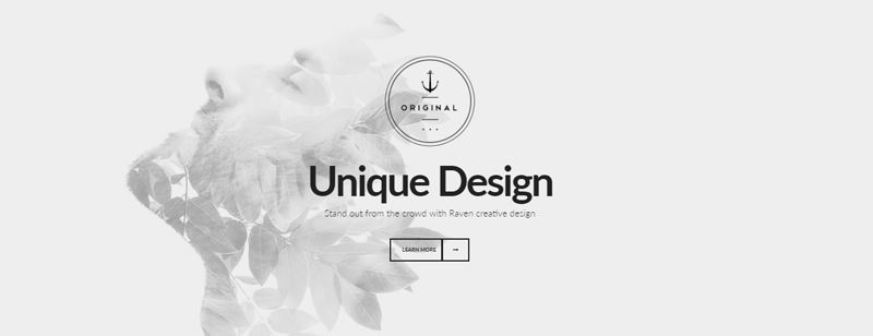 Premium Minimal WordPress Themes - Cover