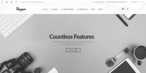 Raven - Premium Minimal WordPress Themes