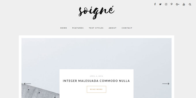 Soigne - Premium Minimal WordPress Themes