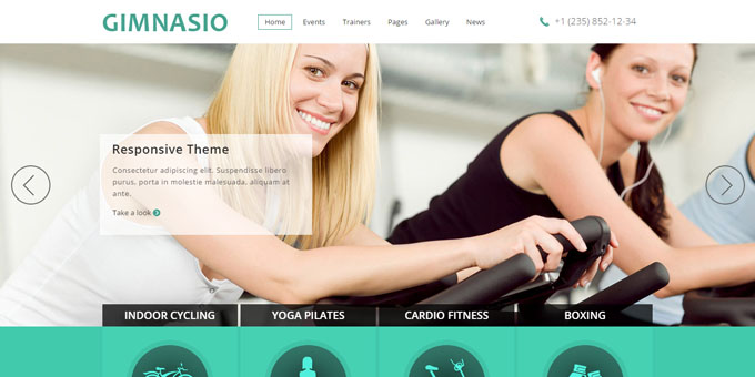 Gimnasio - Cheap WordPress Designs