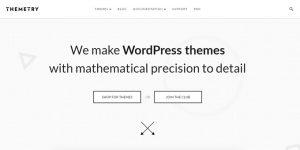 Themetry - Best Places To Buy WordPress Themes